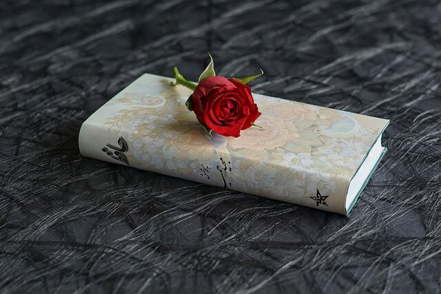 Red Rose on a Hafez Book: Persian Language